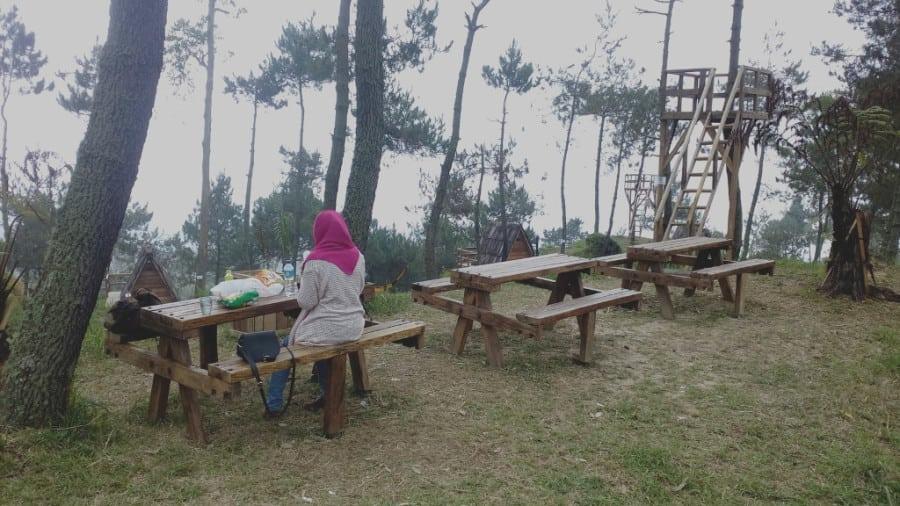 papandayan camping 2